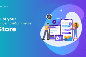 How to enhance the UI of your Magento eCommerce Store Profits